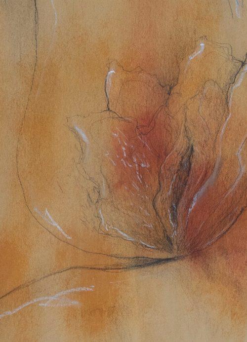 Vulva in Fiore